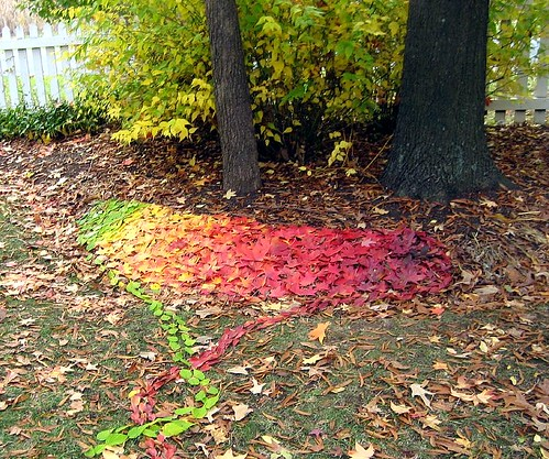 My Andy Goldsworthy rip-off (#2)