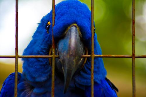 20110603_Zoo_22
