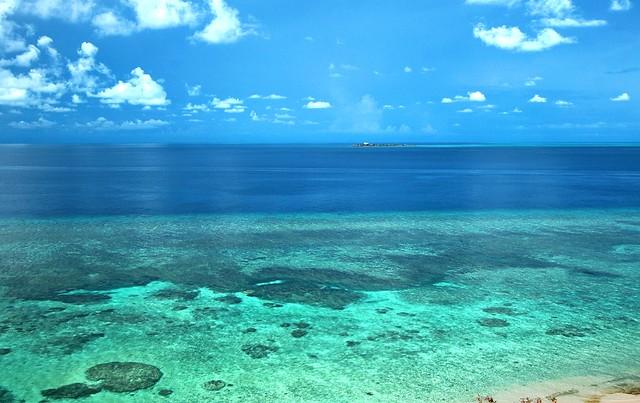 Apo Reef