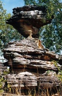 Kakadu National Park - Bardedjilidji Sandstone Walk
