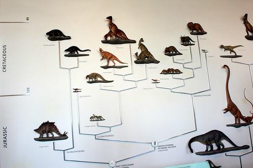 NYC - AMNH: Hall of Ornithischian Dinosaurs