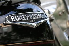 Harley-davidson, Harley Davidson