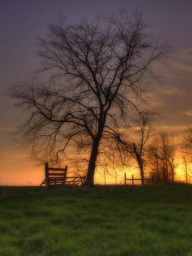 Spring Sunset Magic