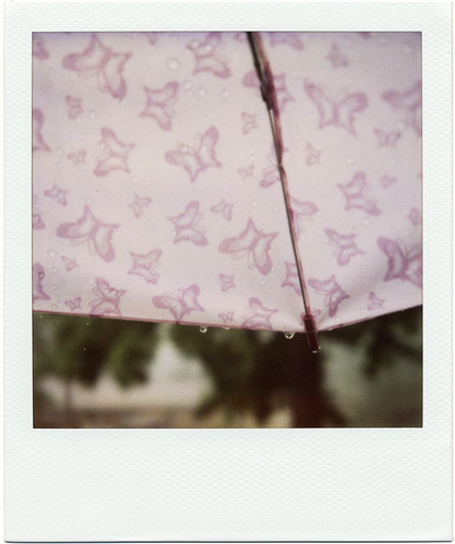 Polaroid: Rainy Weekend