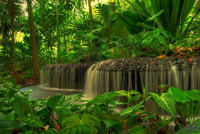 My Dream Garden | Flickr - Photo Sharing! on My Dream Patio  id=61293
