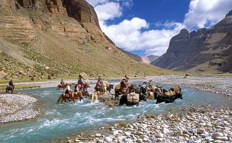 Nomads crossing Lha chu Kailash kora