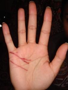 Cat Scratch Fever Filipino Cut Hand