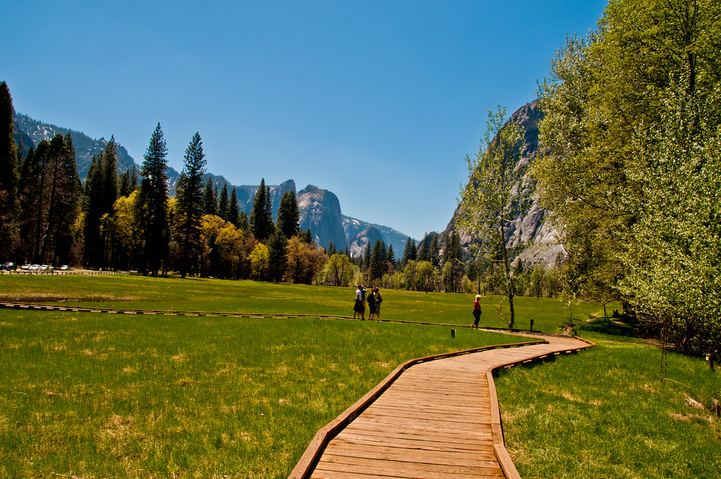 The flat floor of the Yosemite Valley