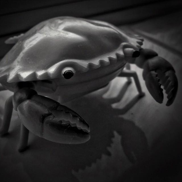 50/365 Crabulon