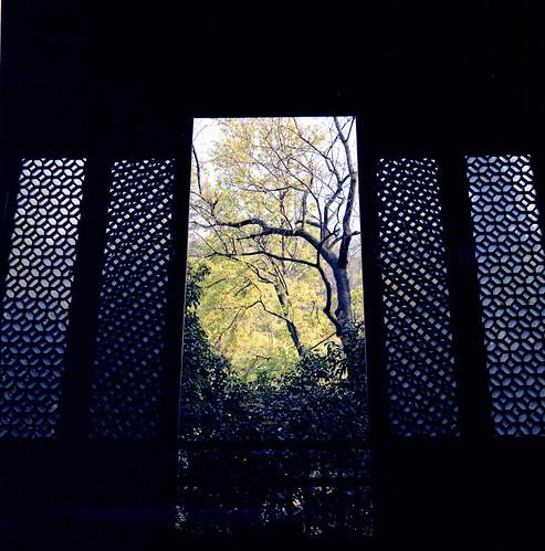一扇窗,迎來世間萬物