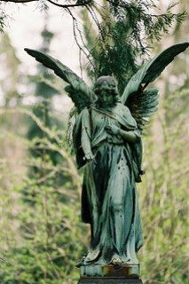Status of an angel in an overgrown garden, wings spread, female, weathered green.