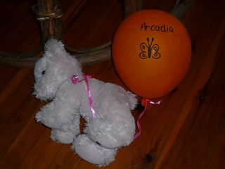 A beautiful white teddy bear with a ballon tied to it by ribbon. The balloon has a butterfly drawn on it, and 'Arcadia' written on it.