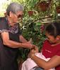 Suruhånu yan Amot (Healers and Medicine)