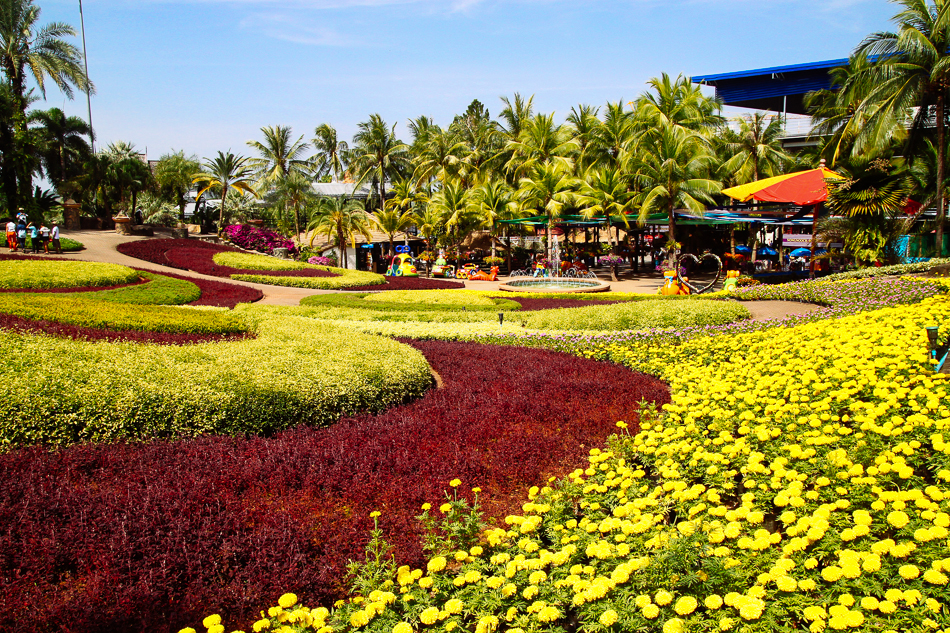 Butterfly Hill, Nong Nooch Tropical Garden, Pattaya