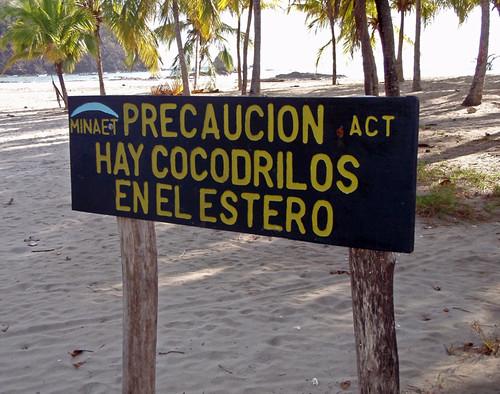 hay cocodrilos en el estero