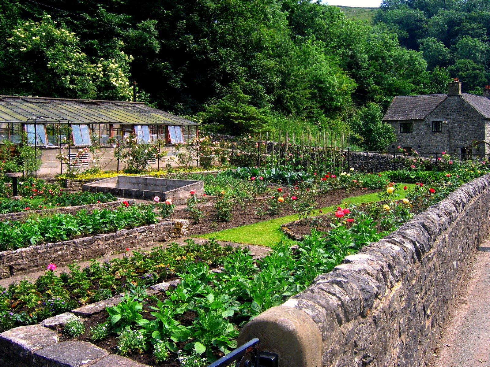 Best Vegetable Garden Design App