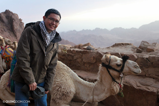 With a Camel at Mount Sinai