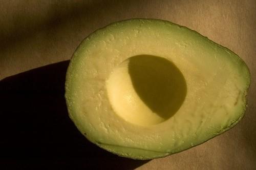 avocado by Elsa4Sound