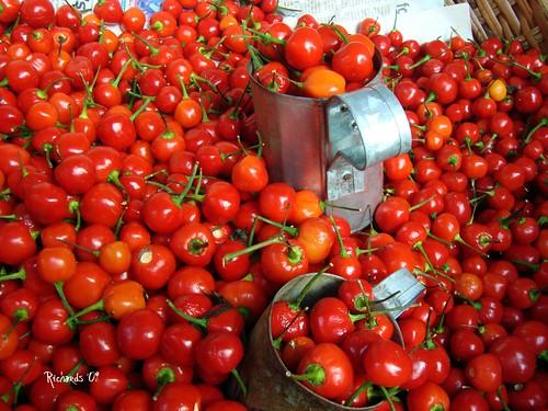 Wiri-wiri peppers