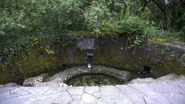 Kildare - Holy Well