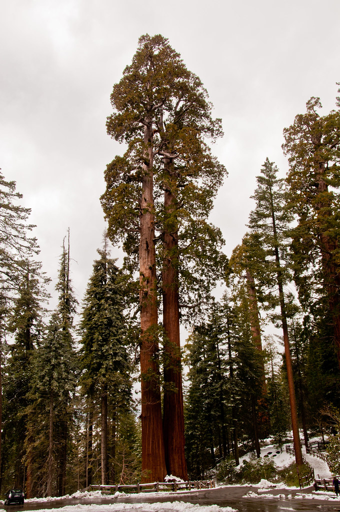 """The """"Twin Sisters"""", Kings Canyon National Park"""