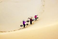Sandlife
