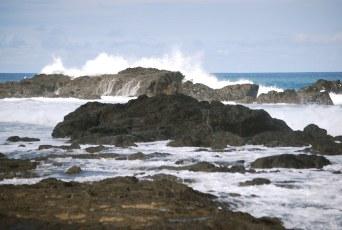 Surf near Treetops