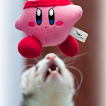 Kirby All-Star: Survival Mode