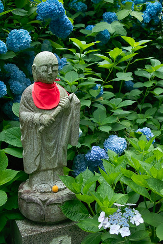 guardian deity with hydrangea