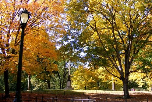 Central Park: Fall 2009