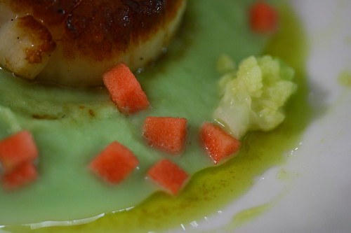 Scallop - Romanesco Cauliflower - Hidden Rose Apple - Curry Oil