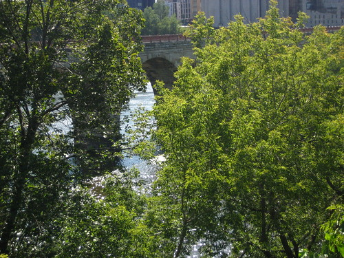 Stone Arch Bridge through the trees