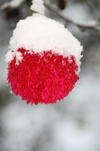 Knitted decoration with snow