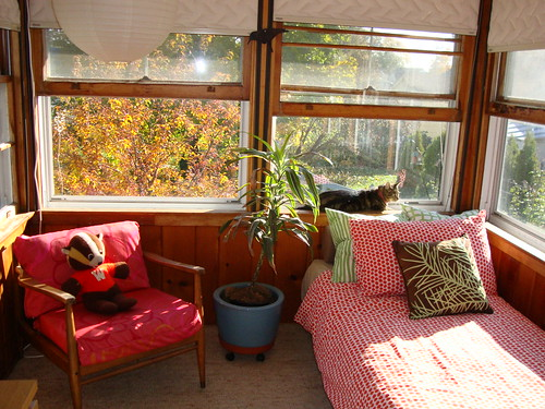 october afternoon in the sunroom