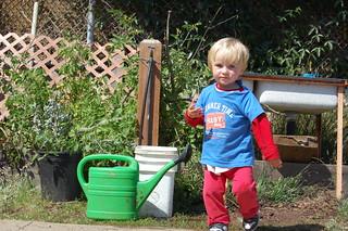 Alani the Gardener