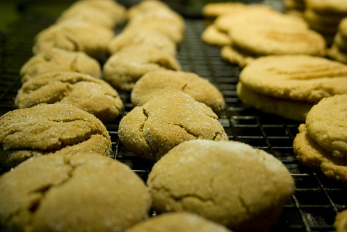 Gingersnaps & Accidental Peanut Butter Cookies