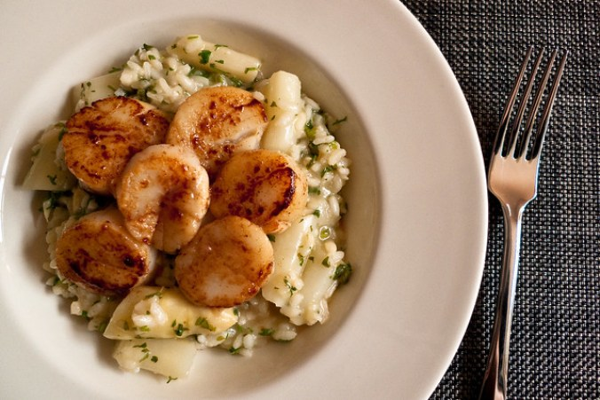 Risotto and scallops