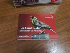 Berliinin Museum für Naturkunde tarjoaa lintujen lauluja kännykän soittoääniksi