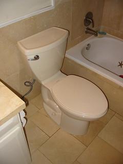 Flushing Money Down the Toilet