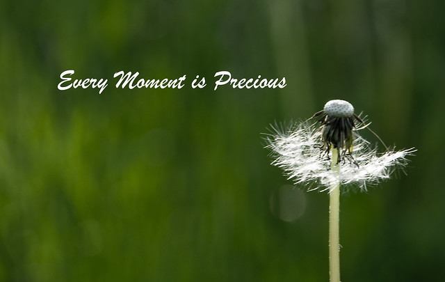 Every Moment is Precious