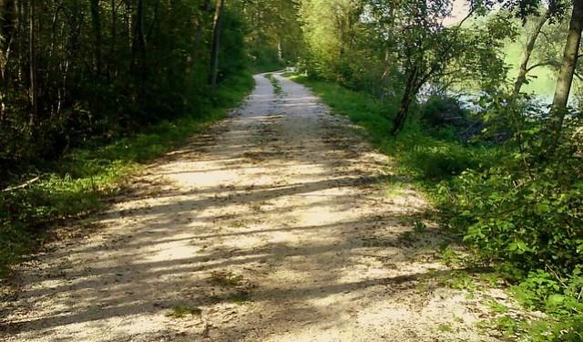 Riverside trail in Germany