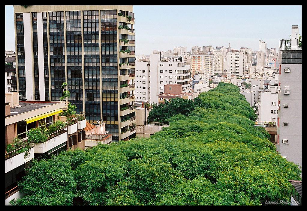 The most beautiful street of the world I - A rua mais bonita do mundo