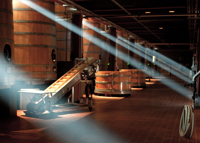 Lights in the Winery