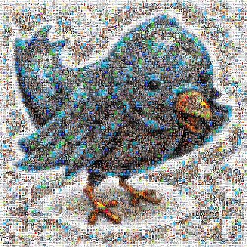 Twitter Follower Mosaic by joelaz