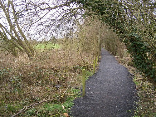The path from Tarraby to Stanwix on the line of the Wall