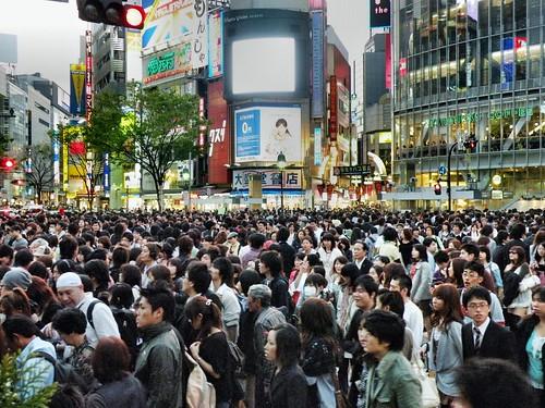 Shibuya Crossing 163