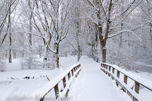 El puente blanco