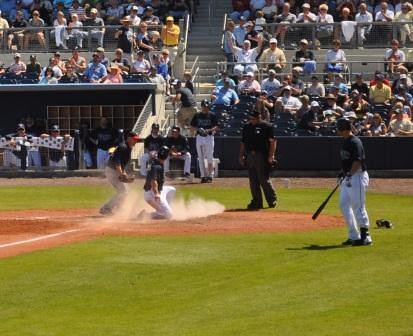 Catch the Action of Tampa Bay Rays Spring Training