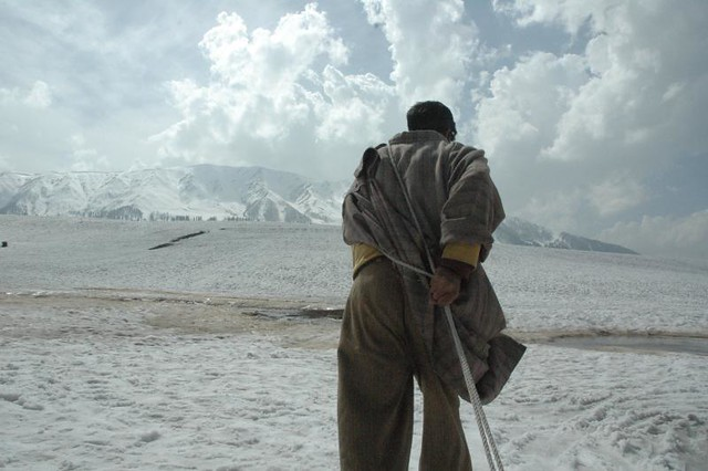 Tugging along, sledge-man, Gulamarg, Kashmir