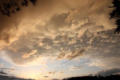 Mammatus Clouds over Lake Sinclair